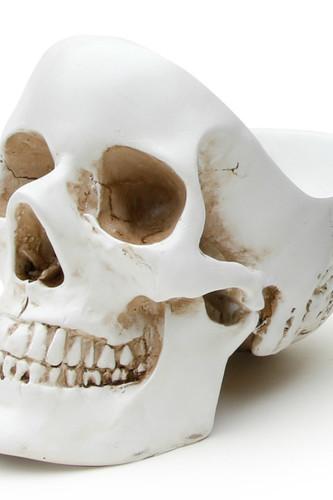 Органайзер для мелочей skull, белый (Белый) органайзер для мелочей qualy caccessories 20 21 10 см белый с зеленым