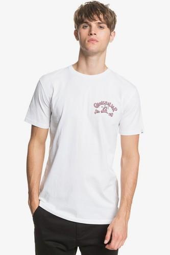 Мужская футболка QUIKSILVER Lullaby Beach (WHITE (wbb0), XL)