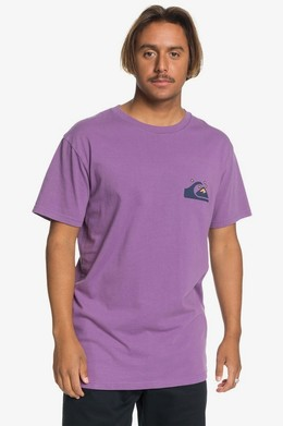 Мужская футболка QUIKSILVER Originals Модель EQYZT05736 CRUSHED GRAPE (pnh0) фото