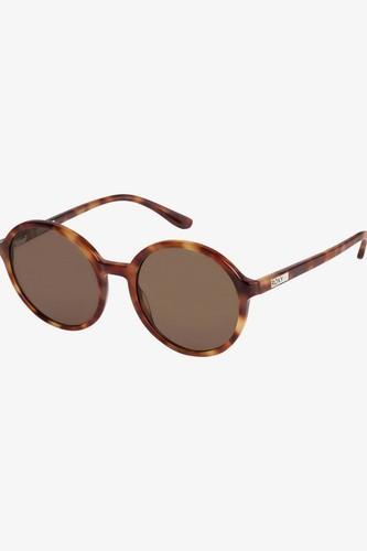 Женские солнцезащитные очки ROXY Blossom (SHINY TORTOISE BROWN/ BROWN (xccc))