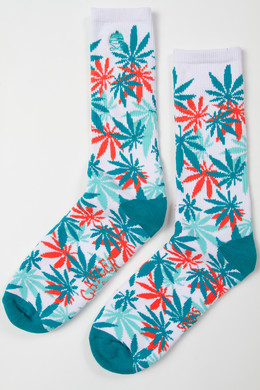Носки CAYLER & SONS Erbz Socks FW14 White/Mint/Pink фото