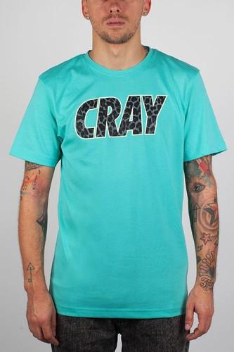 Футболка CAYLER & SONS Cray Tee (Mint-Black-Leopard-Fluor, L) цена