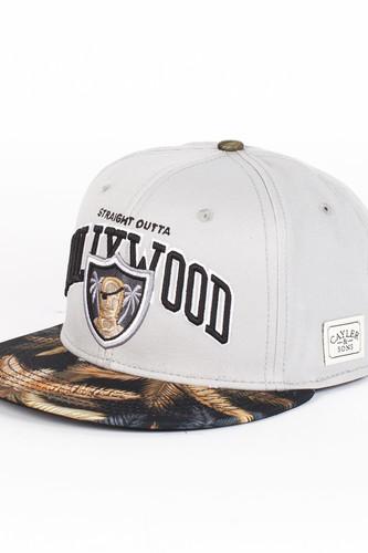 купить Бейсболка CAYLER & SONS Hollywood Cap (Grey-Black-Mc, O/S) по цене 810 рублей