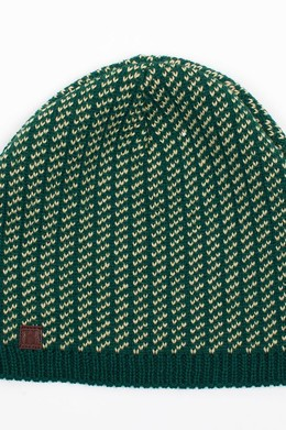 Шапка HARRISON Theodore Short Beanies Green фото