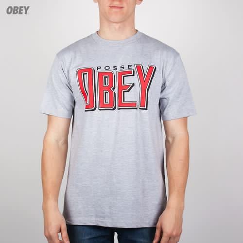 Футболка OBEY Snake Bite (Heather-Grey, XL) футболка obey youth crew black xl