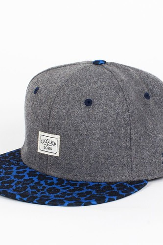 Бейсболка CAYLER & SONS 2tone Fuzzy Leo Cap (Cool-Grey-Flannel-Blue-Leopard, O/S) s cool бейсболка