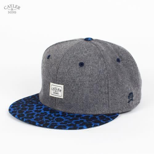 Бейсболка CAYLER & SONS 2tone Fuzzy Leo Cap (Cool-Grey-Flannel-Blue-Leopard, O/S) бейсболка cayler