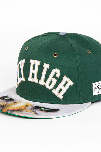 Бейсболка CAYLER & SONS Fly High Cap (Forrest Green/Eagle/White, O/S)
