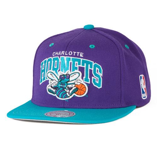Бейсболка MITCHELL&NESS Charlotte Hornets 2 Tone Team Arch Snapback (Purple/Teal, O/S)