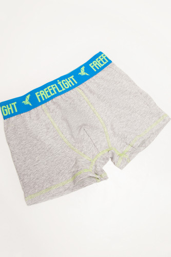 Трусы FREE FLIGHT Vol.13 Light Grey Melange/Navy Steel фото 6