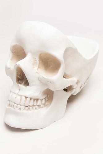 Органайзер для мелочей SUCK UK Skull 1 (Белый)