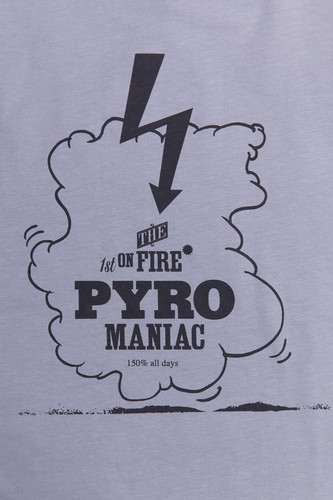 Футболка PYROMANIAC Pyro Cool Grey фото 6