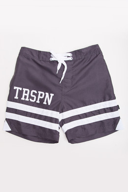 Шорты TRUESPIN Board Shorts Grey фото 2